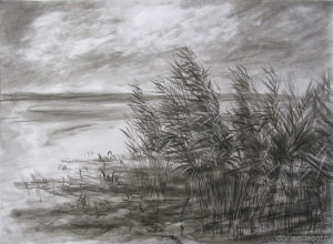 "Aleksandr Medvedev - ""The Pskovskoe lake"". China ink. 2010."