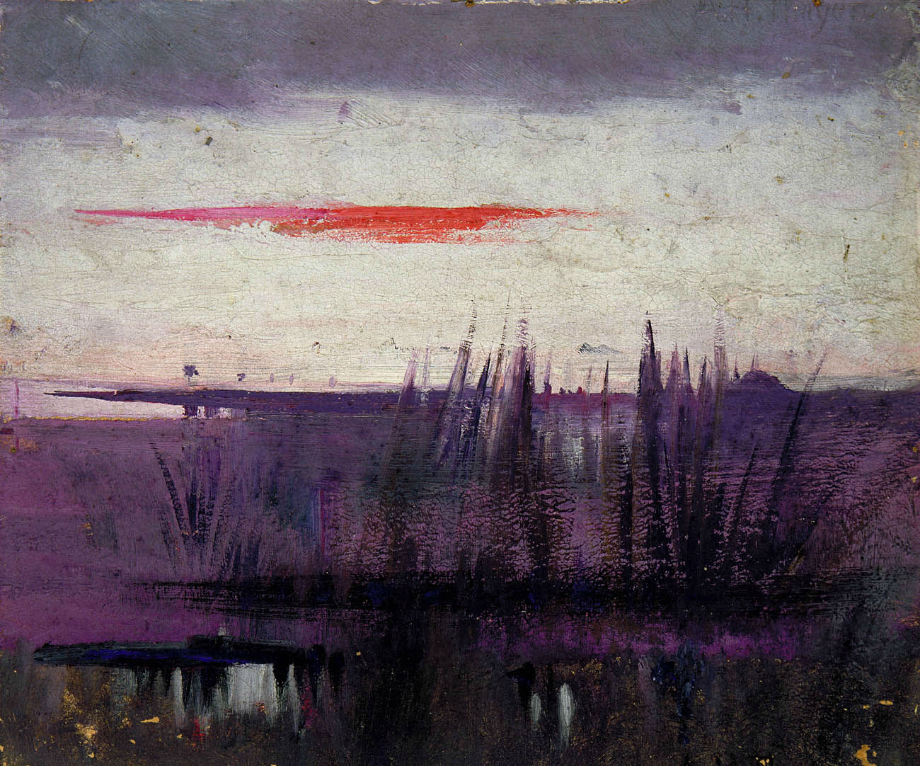 Abbott Handerson Thayer - The Sky Simulated by White Flamingoes