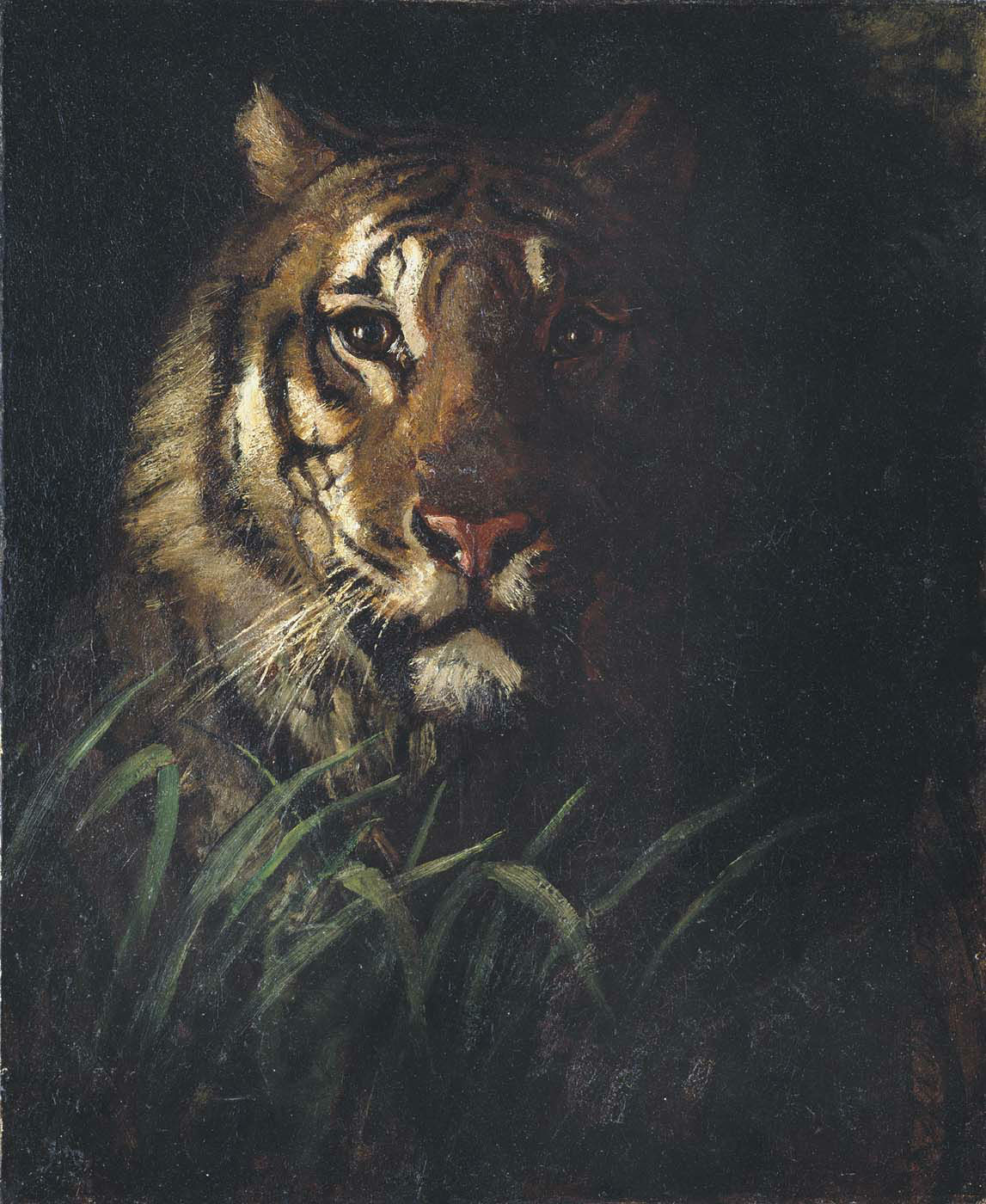 Abbott Handerson Thayer - Tiger's Head