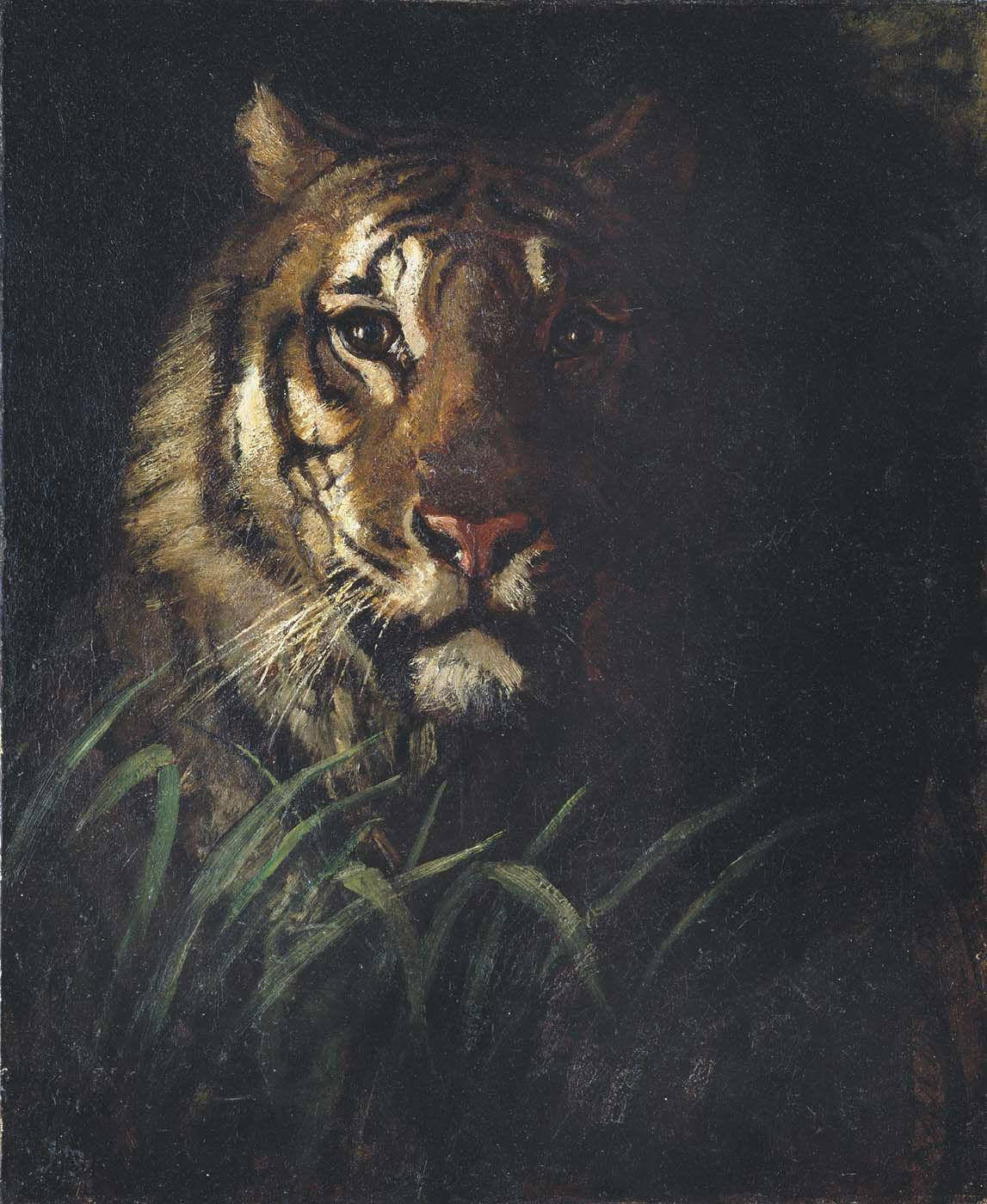 Abbott Handerson Thayer - Tiger's Head