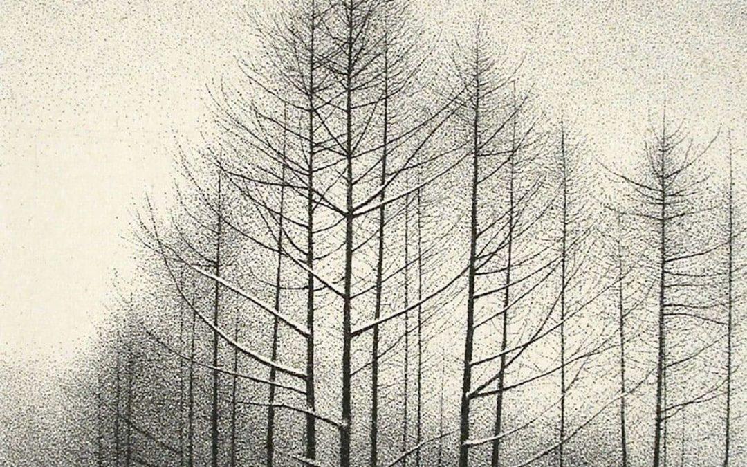Современный японский художник Shigeki Tomura